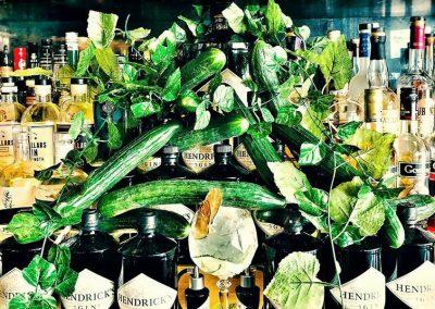 Hendricks Gin cucumbers